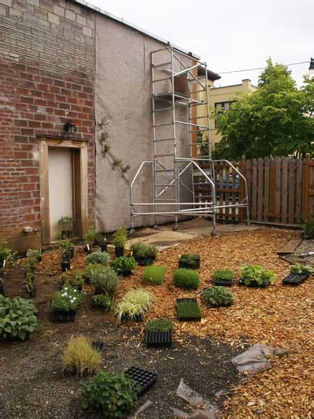 how to start a vertical garden