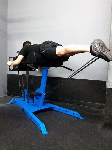 glute ham raise on hyperextension bench new movestrong elite glute ham and reverse hyper bench