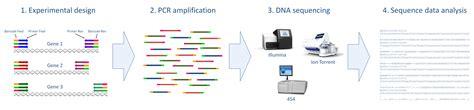 microarray workflow microarray workflow best free home design idea