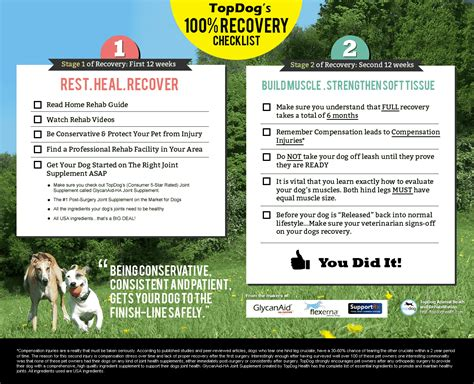 Detox Recovery Powder Dr Jeff Vet Recommended For Liver by Recovery Checklist Topdoghealth