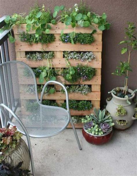 pflanzen für die wohnung pflanzen idee terrasse
