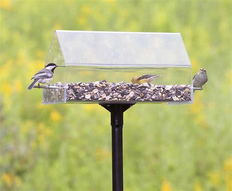 bird feeders pole mounted bird feeders