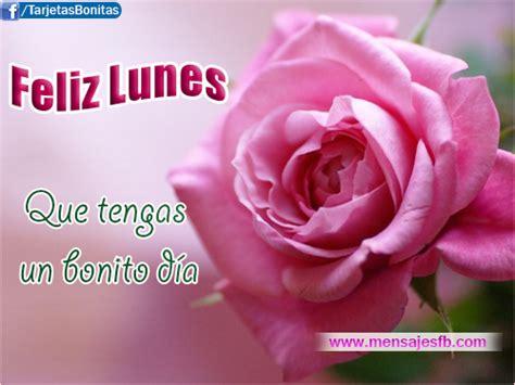 imagenes de rosas feliz dias lunes grandes im 225 genes bonitas graciosas y divertidas con frases para