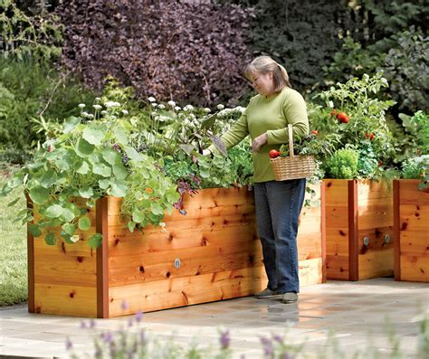 elevated raised garden beds elevated cedar raised garden beds the green head