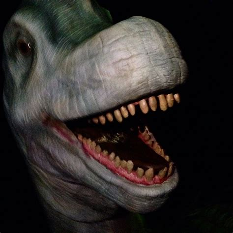 jurassic park boat ride is the jurassic jungle boat ride a waste of money