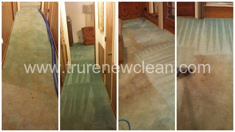 upholstery cleaning arlington tx carpet cleaning w pet odor treatment in arlington tx