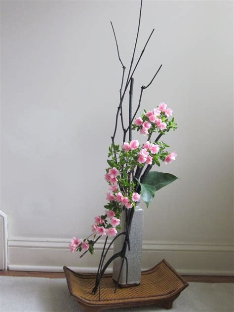 Driftwood Vase Orchids And Ikebana April 2012