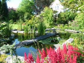 aquatic garden jpm design sprl