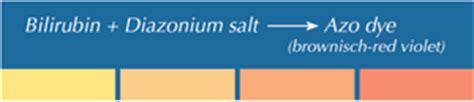 bi test falsi negativi urine diagnostics products solutions analyticon