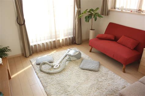 how to clean a white rug at home how to clean a white shag rug best decor things