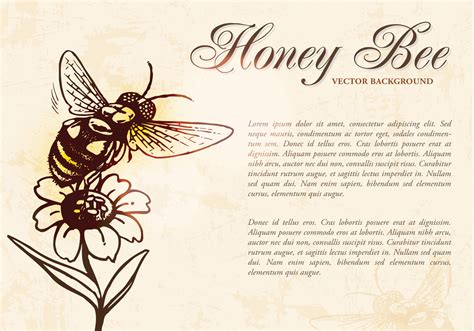 Original Reg A Free Used Bee honey bee background psd free photoshop brushes at brusheezy