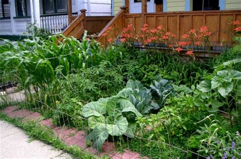pictures of front yard vegetable gardens one hundred