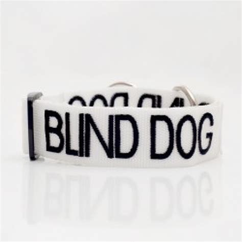 collar for blind dogs blind collar cotswold pet services