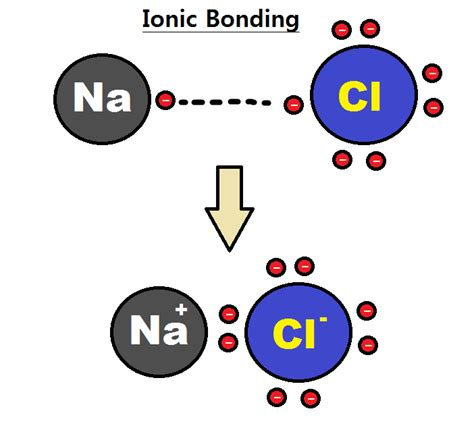 exle of ionic bond difference between monatomic and polyatomic ions