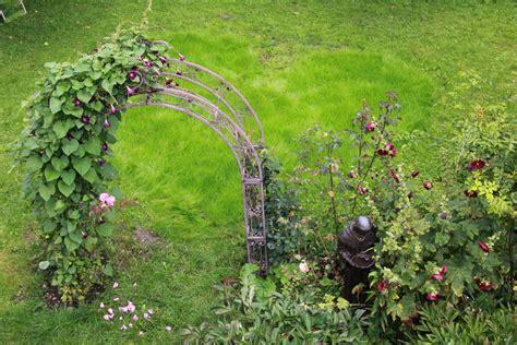 gräser für den garten 17 franziskanergarten salzburg