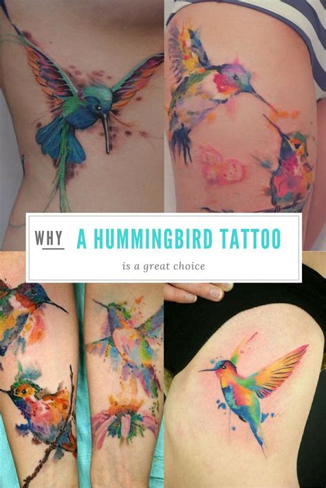 watercolor tattoo facts 25 best ideas about hummingbird watercolor on