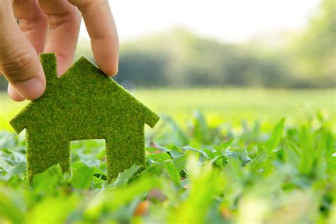 going green in your home 5 ways to add value to your home by going green top