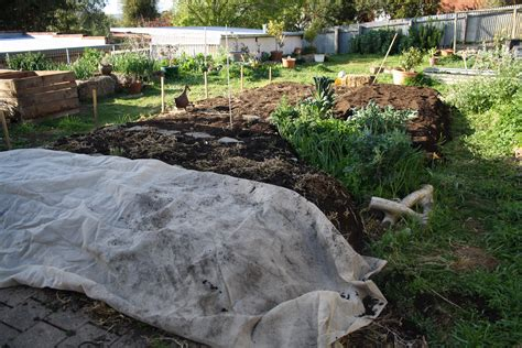digging bed build a no dig garden bed bluetongue greenthumb world organic news