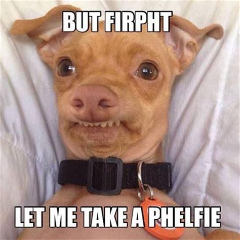 Selfie Meme Funny - 17 best funny selfie quotes on pinterest sarcasm humor