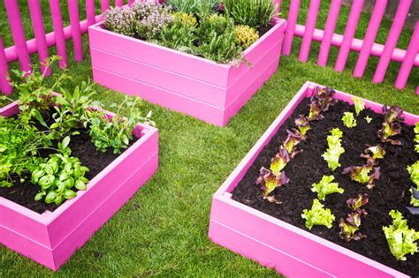 how to last forever in bed 41 backyard raised bed garden ideas