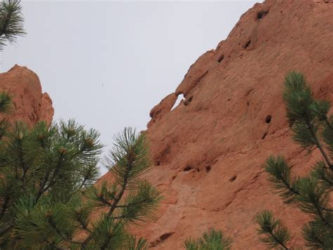 Garden Of The Gods Camels Club Panoramio Photo Of Camels Garden Of The Gods Co