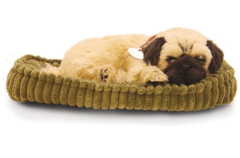 petzzz pug uk precious petzzz the lifelike breathing huggable pet