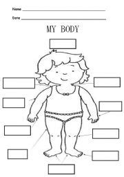 Vocabulary Worksheets &gt Face And Body Parts sketch template
