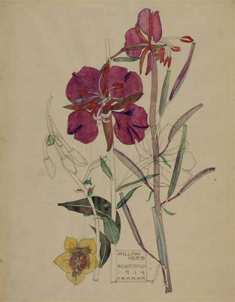 charles rennie mackintosh s watercolours