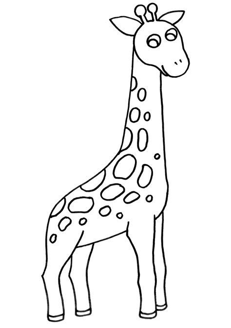 imagenes de jirafas sin colorear dibujo colorear 56 giraffe dibujo de animales para imprimir