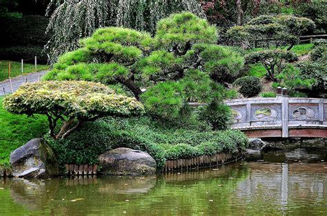 Botanical Gardens Nyc Botanical Garden In New York Photograph By Meeli Sonn