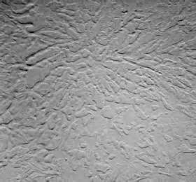 Wall Texture Types Gallery For Gt Wall Texture Types