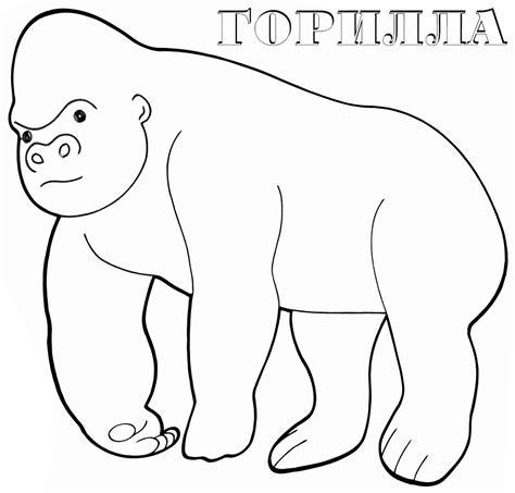 dibujos infantiles org dibujos infantiles para colorear de gorilas