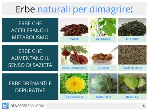combinazione alimenti per dimagrire erbe dimagranti naturali piante efficaci per dimagrire