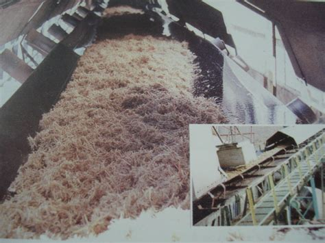How To Make Paper From Sugarcane Bagasse - how to make paper from sugarcane bagasse 28 images