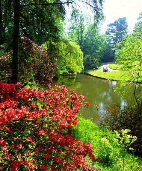 garden pics clyne gardens