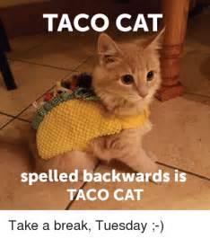 Tuesday Funny Memes - taco cat spelled backwards is taco cat take a break