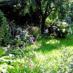 Schattengarten Gestalten