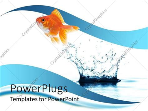 Powerpoint Template A Beautiful Fish And A Water Splash With Clear Background 14512 Fish Powerpoint Template
