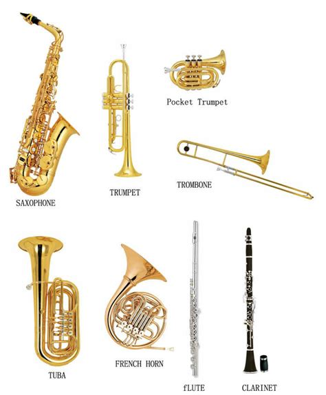 wind section instruments image gallery wind instruments
