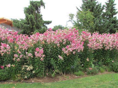 Green Bay Botanical Garden Wi Top Tips Before You Go Botanical Garden Green Bay Wi