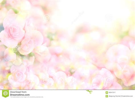 Soft Bordir Flower 2 the abstract soft sweet pink flower background from