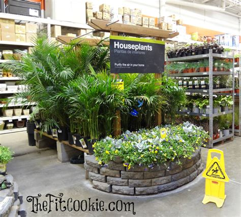 earth day inspired diy projects with the home depot the