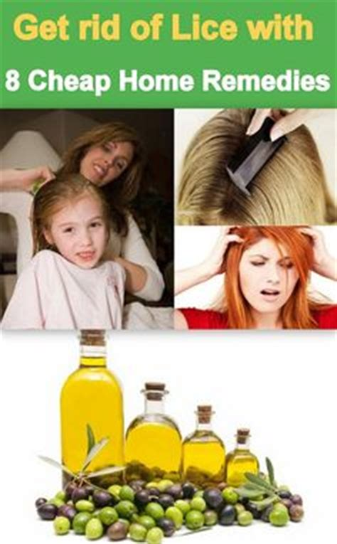 lice on home remedies cases and lice prevention