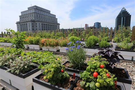 Hgtv Home Design Ideas by Hgtv Presents Gardens In The Sky And Other Rooftop Green