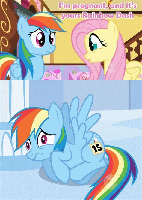 human rainbow dash x reader lemon apexwallpapers com rainbow dash and fluttershy go on an adventure by 3037426