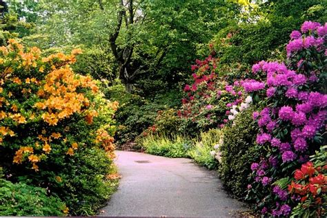 Vandusen Botanical Garden 50 Event Vandusen Botanical Garden Spinal Cord Injury Bc