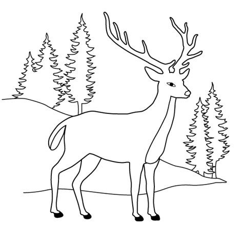 coloring page of deer head free deer head colring pages coloring pages