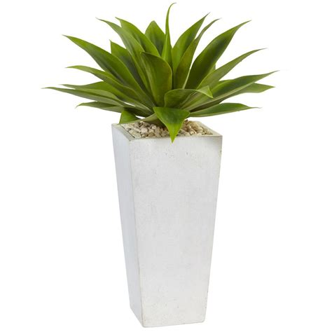 nearly indoor agave artificial plant in white