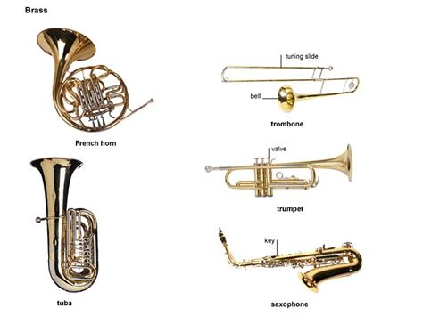 brass section instruments orchestra brass instruments www pixshark com images