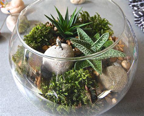 Garden Terrarium Terrarium Kit The By Garden Trading